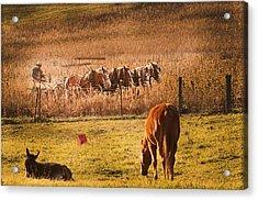 Farming  Modes Of Transportation Acrylic Print by Randall Branham