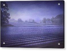 Farmland 2 Acrylic Print