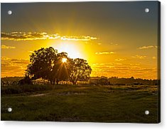 Farmland Sunset Acrylic Print
