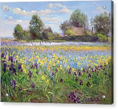 Farmstead And Iris Field Acrylic Print