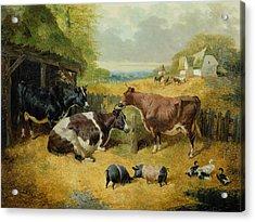 Farmyard Scene Acrylic Print by John Frederick Herring Snr