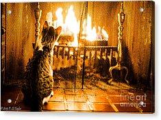 Fascinating Flames Acrylic Print