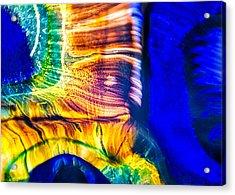 Fast Friends Acrylic Print by Omaste Witkowski