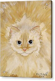 Acrylic Print featuring the painting Fat Kitty by Alison Caltrider