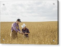 Father And Son Checking Wheat Crop Acrylic Print by Hero Images