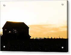 Father's Field Acrylic Print by BandC  Photography