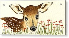 Fawn In The Flowers Acrylic Print by Juan  Bosco