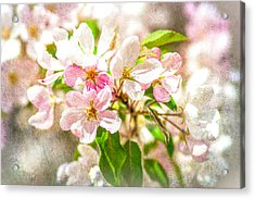 Feast Of Life 16 - Love Is In The Air Acrylic Print by Alexander Senin