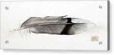 Feather Acrylic Print by Ann Miller