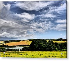 Feather Clouds Over Fields Acrylic Print by Winifred Butler