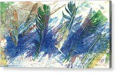 Feather Dance Acrylic Print