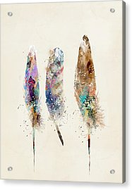 Feathers Acrylic Print by Bri B