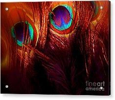 Feathers Acrylic Print by Newel Hunter