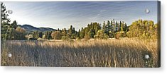 February 21 Panorama Acrylic Print by Larry Darnell