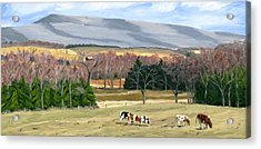 February At Bear Meadows Farm Acrylic Print