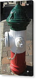 Acrylic Print featuring the photograph Federal Hill Fire Hydrant by Bruce Carpenter
