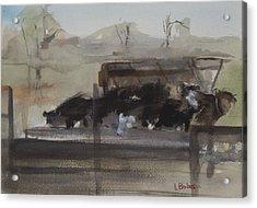 Feeding Cows Acrylic Print by Lynne Bolwell