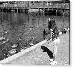 Acrylic Print featuring the photograph Feeding The Birds by Heidi Manly