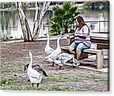 Feeding The Geese Acrylic Print by Photographic Art by Russel Ray Photos