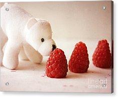 Feeding The Polar Bear I Acrylic Print