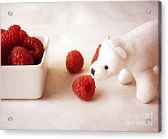 Feeding The Polar Bear Iv Acrylic Print