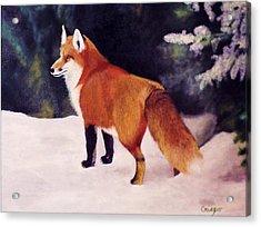 Feeling Foxy Acrylic Print