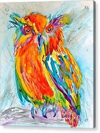 Feeling Owlright Acrylic Print by Beverley Harper Tinsley
