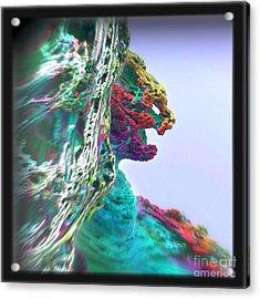 Feline Cliff Face Acrylic Print by Kevin Martin