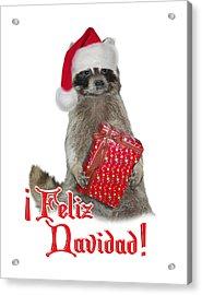 Feliz Navidad - Raccoon Acrylic Print by Gravityx9  Designs