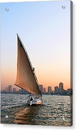 Felucca On The Nile Acrylic Print