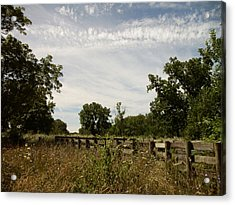 Acrylic Print featuring the photograph Fence 2 by Cynthia Lassiter