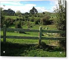 Fence And Beyond Acrylic Print by Ron Torborg