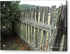 Fence At The Farm Acrylic Print by Graham Foulkes