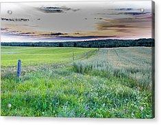 Fence Line Dawn Acrylic Print
