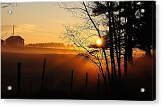 Fence Line Acrylic Print by Paul Noble