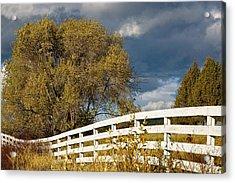 Fence Acrylic Print