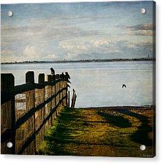 Fence Of Trust Acrylic Print by Jordan Blackstone