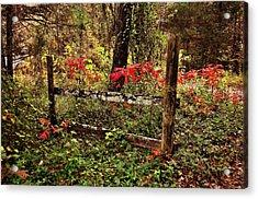Fence On The Buffalo Acrylic Print by Marty Koch