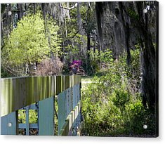 Fence Points The Way Acrylic Print by Patricia Greer