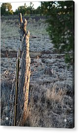 Acrylic Print featuring the photograph Fence Post by David S Reynolds