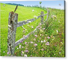 Fence Post Acrylic Print by Melinda Fawver