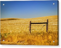 Fence Post Near Choteau Montana Painted Acrylic Print by Rich Franco