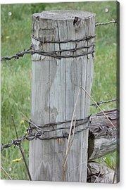 Fence Post Acrylic Print