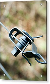 Fence Wire Tightener Acrylic Print by Gustoimages/science Photo Library