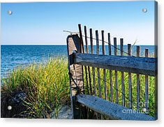 Acrylic Print featuring the photograph Fence With A Great View by Mike Ste Marie