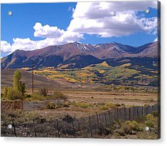 Fenced Nature Acrylic Print