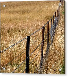 Fenced Off Acrylic Print by Kaleidoscopik Photography