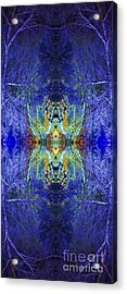 Fereshteh Acrylic Print by Tim Gainey