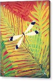 Fern Dragon Acrylic Print