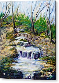 Ferndell Creek Noon  Acrylic Print by Randy Sprout